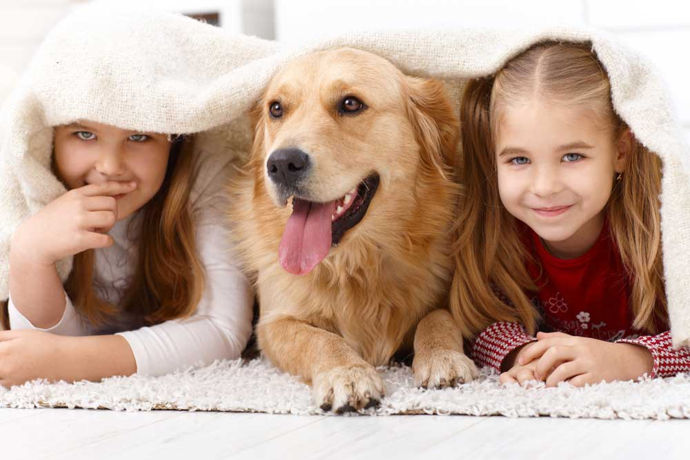 Kinder und ein Hund unter einer Decke